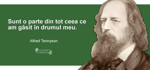 """""""Sunt o parte din tot ceea ce am găsit în drumul meu."""" Alfred Tennyson"""