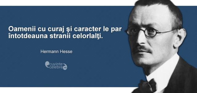 """""""Oamenii cu curaj şi caracter le par întotdeauna stranii celorlalţi."""" Hermann Hesse"""