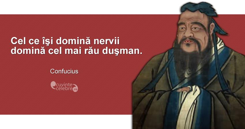 """""""Cel ce îşi domină nervii domină cel mai rău duşman."""" Confucius"""