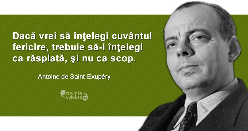 """""""Dacă vrei să înţelegi cuvântul fericire, trebuie să-l înţelegi ca răsplată, şi nu ca scop."""" Antoine de Saint-Exupéry"""