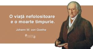 """""""O viață nefolositoare e o moarte timpurie."""" Johann Wolfgang von Goethe"""