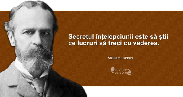 """""""Secretul înțelepciunii este să știi ce lucruri să treci cu vederea."""" William James"""