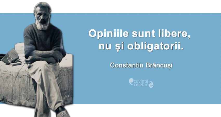 """""""Opiniile sunt libere, nu și obligatorii."""" Constantin Brâncuși"""