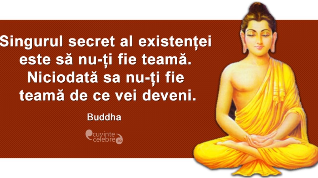 pierderea în greutate buddha livita cafea de slăbire