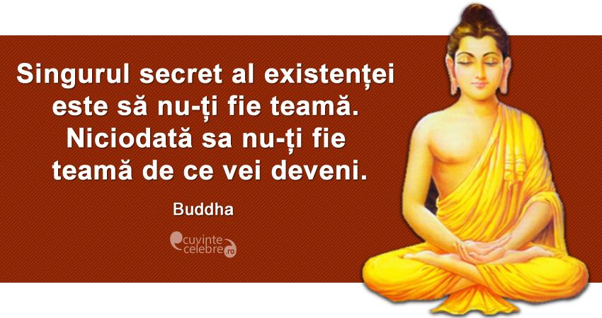 """""""Singurul secret al existenței este să nu-ți fie teamă. Niciodată sa nu-ți fie teamă de ce vei deveni."""" Budddha"""