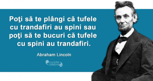 """Poţi să te plângi că tufele cu trandafiri au spini sau poţi să te bucuri că tufele cu spini au trandafiri."" Abraham Lincoln"