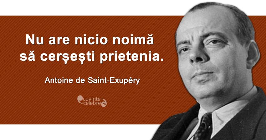 """""""Nu are nicio noimă să cerșești prietenia."""" Antoine de Saint-Exupéry"""