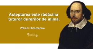 """""""Așteptarea este rădăcina tuturor durerilor de inimă."""" William Shakespeare"""