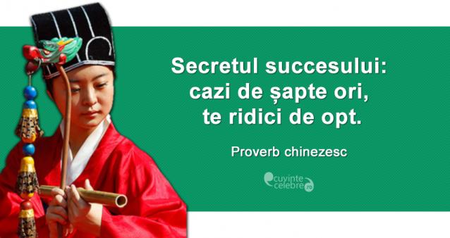 """""""Secretul succesului: cazi de șapte ori, te ridici de opt."""" Proverb chinezesc"""
