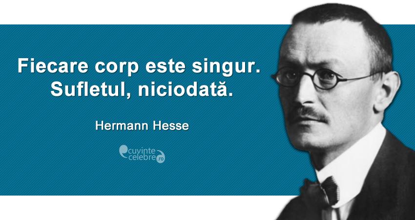 """""""Fiecare corp este singur. Sufletul, niciodată."""" Hermann Hesse"""