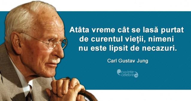 """""""Atâta vreme cât se lasă purtat de curentul vieții, nimeni nu este lipsit de necazuri."""" Carl Gustav Jung"""