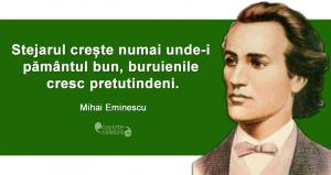 """""""Stejarul crește numai unde-i pământul bun, buruienile cresc pretutindeni."""" Mihai Eminescu"""