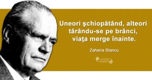 """""""Uneori şchiopătând, alteori târându-se pe brânci, viaţa merge înainte."""" Zaharia Stancu"""
