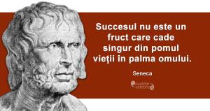 """""""Succesul nu este un fruct care cade singur din pomul vieții în palma omului."""" Seneca"""