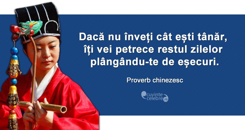 """""""Dacă nu înveți cât ești tânăr, îți vei petrece restul zilelor plângându-te de eșecuri."""" Proverb chinezesc"""