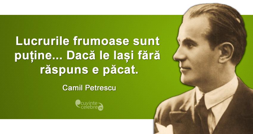 """""""Lucrurile frumoase sunt puține... Dacă le lași fără răspuns e păcat."""" Camil Petrescu"""
