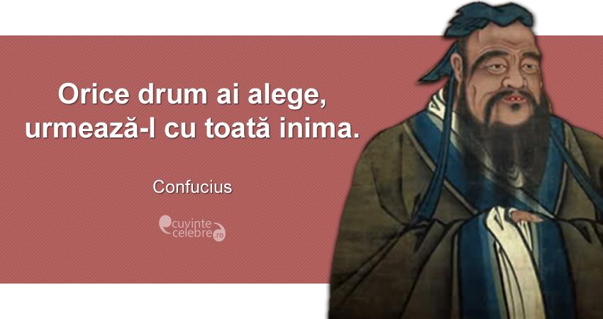 """""""Orice drum ai alege, urmează-l cu toată inima."""" Confucius"""