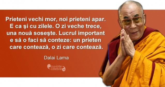 """""""Prieteni vechi mor, noi prieteni apar. E ca şi cu zilele. O zi veche trece, una noua soseşte. Lucrul important e să o faci să conteze: un prieten care contează, o zi care contează."""" Dalai Lama"""