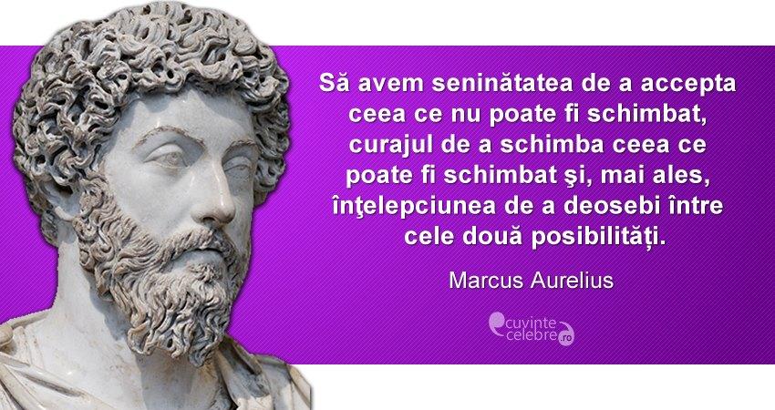 citate celebre despre intelepciune Un mod de a trăi, citat de Marcus Aurelius citate celebre despre intelepciune