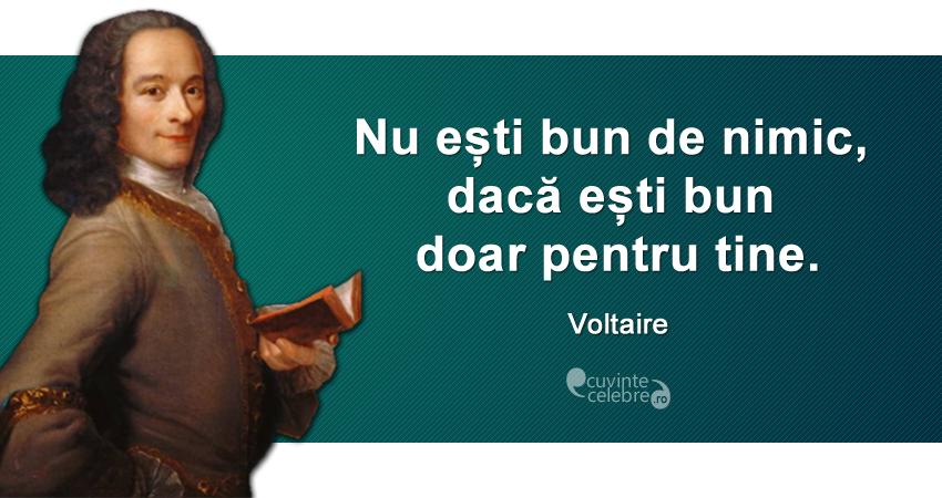 """""""Nu ești bun de nimic, dacă ești bun doar pentru tine."""" Voltaire"""