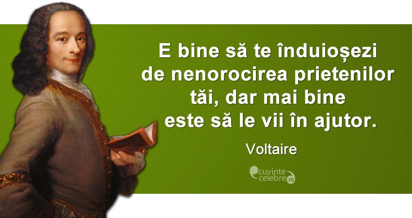 """""""E bine să te înduioșezi de nenorocirea prietenilor tăi, dar mai bine este să le vii în ajutor."""" Voltaire"""