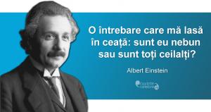"""""""O întrebare care mă lasă în ceață: sunt eu nebun sau sunt toți ceilalți?"""" Albert Einstein"""