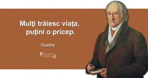 """""""Mulţi trăiesc viaţa, puţini o pricep."""" Johann Wolfgang von Goethe"""