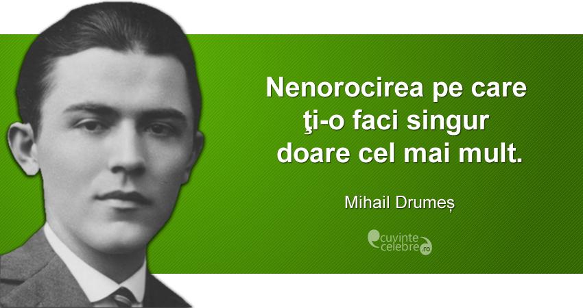 """""""Nenorocirea pe care ţi-o faci singur doare cel mai mult."""" Mihail Drumeș"""