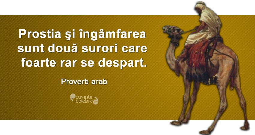 """""""Prostia şi îngâmfarea sunt două surori care foarte rar se despart."""" Proverb arab"""