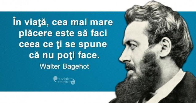 Citat Walter Bagehot