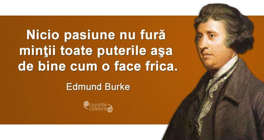 Citat Edmund Burke