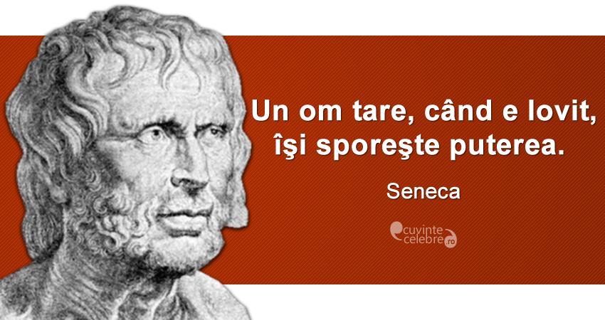 """"""" Un om tare, când e lovit, îşi sporeşte puterea."""" Seneca"""