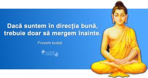 Proverb budist