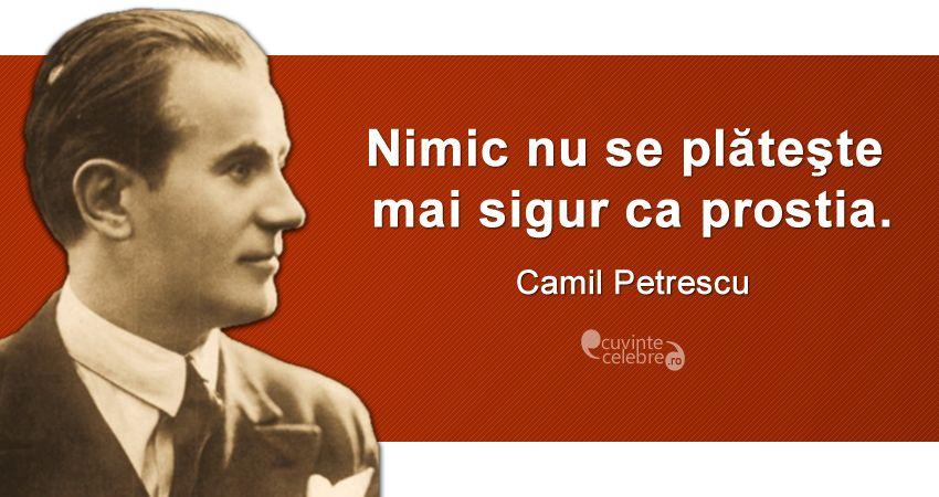 Vine și nota de plată, citat de Camil Petrescu