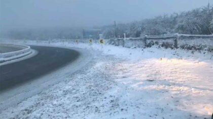 Ninge in Romania. Zapada a...